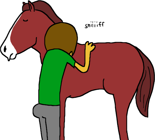 andrew_hussie horses skellyanon solo wut