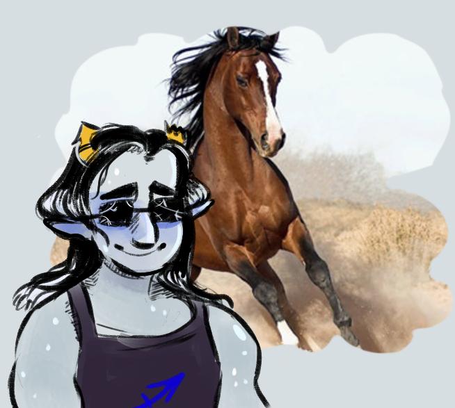 alizabith equius_zahhak horses